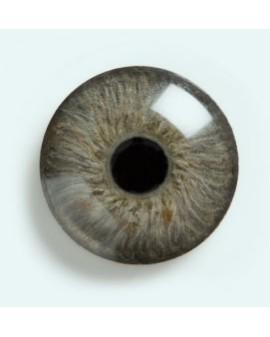 Z rysunkiem zdrowego oka